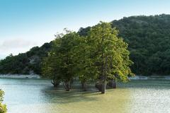 mountain lake with cypress trees - stock photo