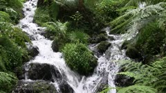 Two fast flowing mountain streams. - stock footage