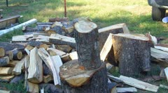 Splitting Logs For Firewood Close Up - stock footage