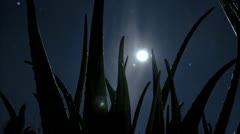 Mystical moon scary time lapse Stock Footage