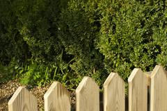 wooden decorative fence and green garden - stock photo