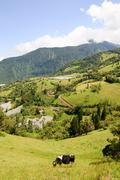 Farming In The Ecuador Andes Mountains In A Clear Day Stock Photos
