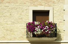 classic balcony with flowers - stock photo