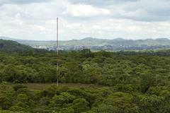 Communication Antenna Deep In The Ecuadorian Jungle - stock photo