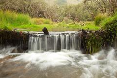 Small Waterfall In Ecuador Stock Photos