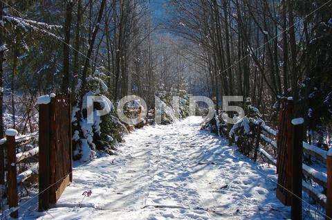 Stock photo of Winter Road