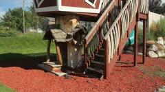 Kids Tree house 2 - stock footage