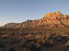 dawn light nevada desert - stock photo
