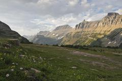 MG 1016 near logan pass glacier park.jpg - stock photo