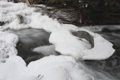 Ice on the creek - stock photo