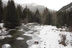 Mountain stream in winter Stock Photos