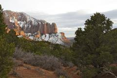 Zion View - stock photo