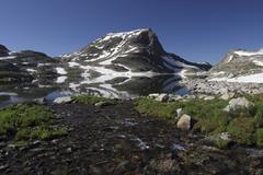 Lone Mountain/Jasper lake - stock photo