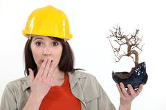 Surprised tradeswoman holding a bonsai plant Stock Photos