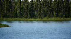 Pan Lake Shore Clear Day Stock Footage