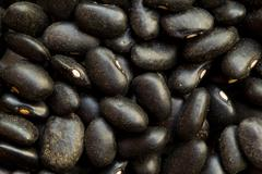 The Small Shiny Black Turtle Bean Is Especially Popular In Latin American Stock Photos