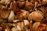 Abstract Shot Of Coconut Shells With Different Brown Tones Stock Photos