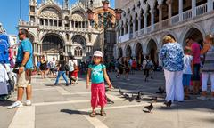 16. jul 2012 - small girl with pigeons in st marco square, in front of doge's Stock Photos