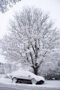 Car and tree in snow Stock Photos