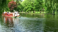 Stock Video Footage of Boston swan boats; 5