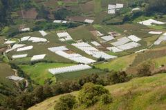 Greenhouses In Highlands Of Ecuador Approx 3000M Altitude - stock photo