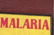 Malaria Stock Photos