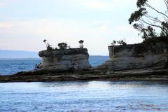 Dusk in booderee national park. jervis bay. australia Stock Photos