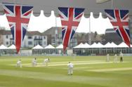 Bunting and cricket Stock Photos