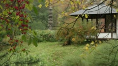 Japanese garden Stock Footage