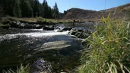 Fly Fisherman wide shot Stock Footage
