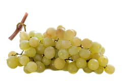 italia grapes - stock photo