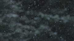 Snow Flurry - Slow Motion against Trees Stock Footage