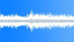 Deep jungle ambiance Sound Effect