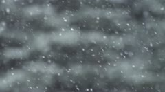 Falling Snow in Slow Motion with Blurred Forest Stock Footage