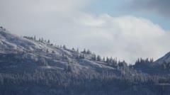 Lone Raven Flying Toward Snowy Kenai Mountains Stock Footage