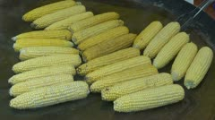 Cooking  corn cobs in agriculture fair Stock Footage