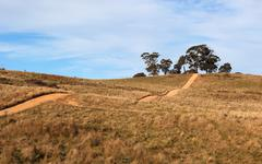 Hilly country road. tablelands near oberon. new south wales. australia. Stock Photos