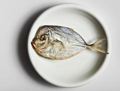 Salted moonfish on white plate Stock Photos