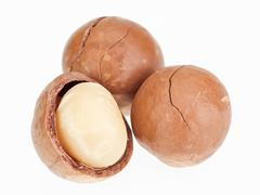 shelled and unshelled macadamia nuts isolated on white - stock photo