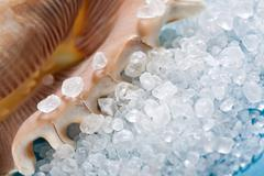 Sea shell with dead sea salt on blue Stock Photos