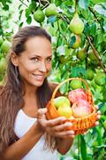 beautiful lady in the garden with apples and pears in the crib - stock photo