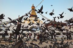 boudha nath (bodhnath) stupa flight of doves, nepal - stock photo