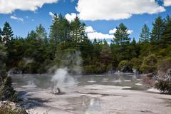 Steaming mud pool Stock Photos
