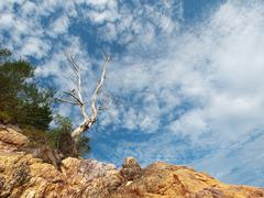 dramatic beach landscape - stock photo