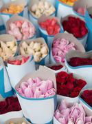 Bunch of roses Stock Photos