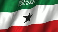 Somaliland Waving Flag Stock Footage