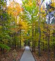 Mammoth Cave National Park Path to Nowhere 1 PHOTO Stock Photos