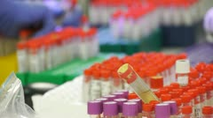 Lab Assistant sorting test tubes with analysis. Stock Footage