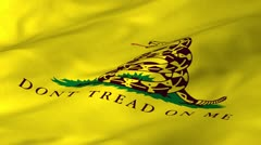 TeaParty Waving Flag Stock Footage