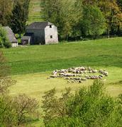 countryside scene - stock photo